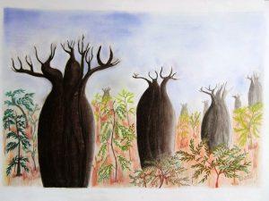 3 baobabs couleurs