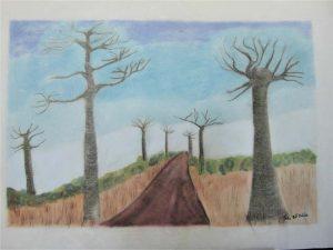 Julia-ArtMalala_Baobabs-en-éclaiteur_Pastel_50X70