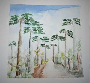 Julia-ArtMalala_Promenade-chez-les-Baobabs_Aquerelle-30X30